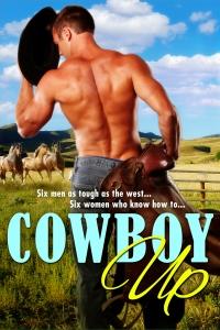 CowboyUp2D_1400px 2nd flat