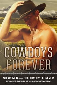 DAnnLinscottDunham_CowboysForever_eCover_HR