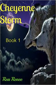 Cheyenne storm